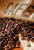 Café Mexique BIO un kilo