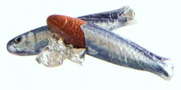 sardines lait